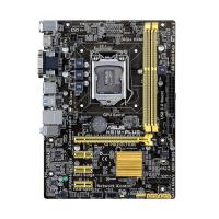 H81M-PLUS - LGA 1150, Intel H81, 2DDR3(Dual Channel), vga integrada, 1 x D-Sub + 1 x DVI + 1 x HDMI , SATA 6Gb/s*2 + SATA 3Gb/s*2 MicroAtx